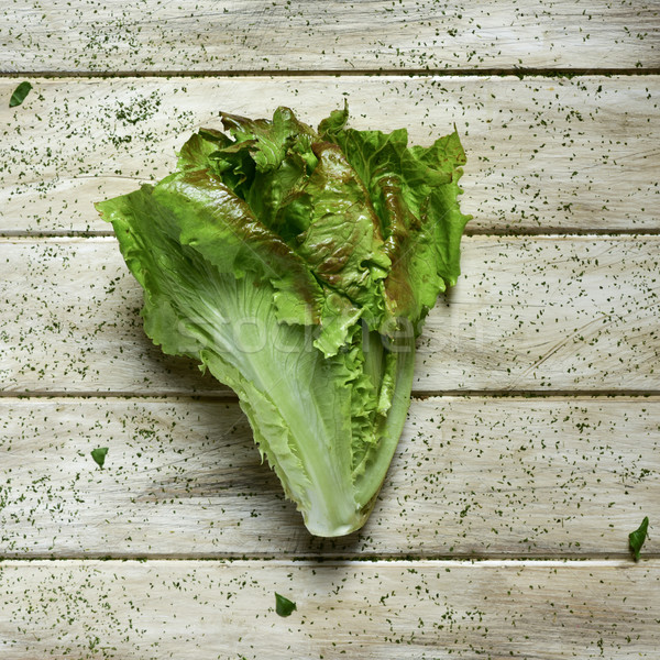 lettuce on a rustic white table Stock photo © nito