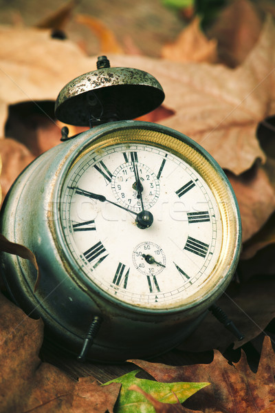 old alarm clock surrounded by dry leaves Stock photo © nito