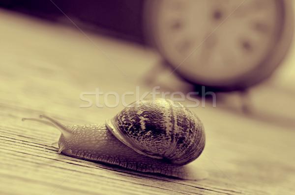 Föld csiga óra szépia öreg asztali Stock fotó © nito