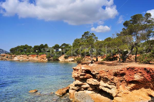 northeastern coast of Ibiza Island, Spain Stock photo © nito