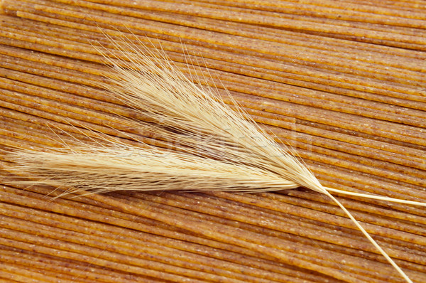 Nyers teljeskiőrlésű búza spagetti közelkép köteg tészta Stock fotó © nito