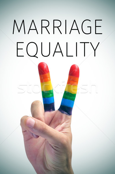 rainbow flag and the text marriage equality Stock photo © nito