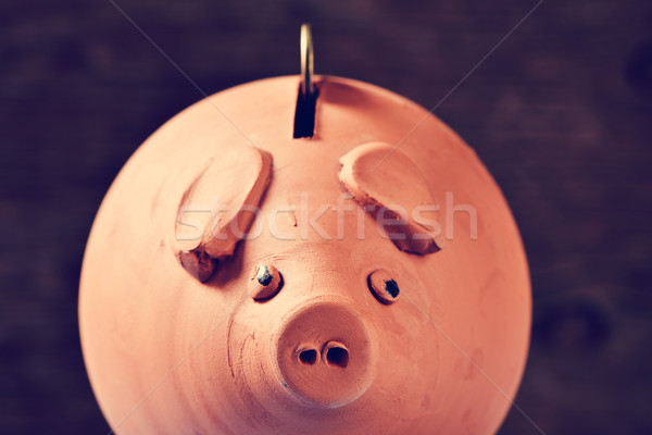 coin in a piggy bank, filtered Stock photo © nito