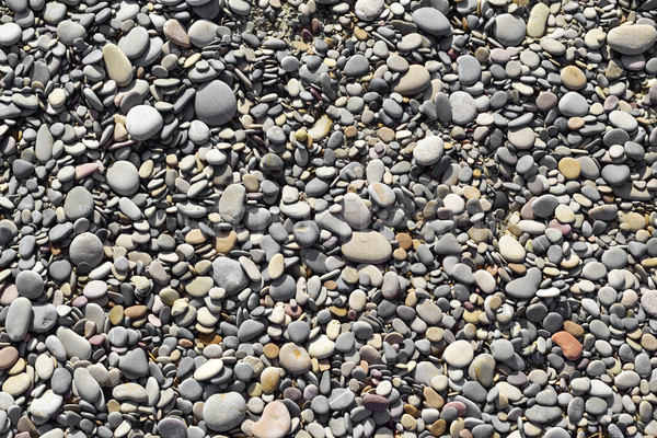 pebbles of a shingle beach or a river Stock photo © nito