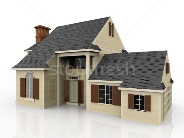 the house Stock photo © njaj