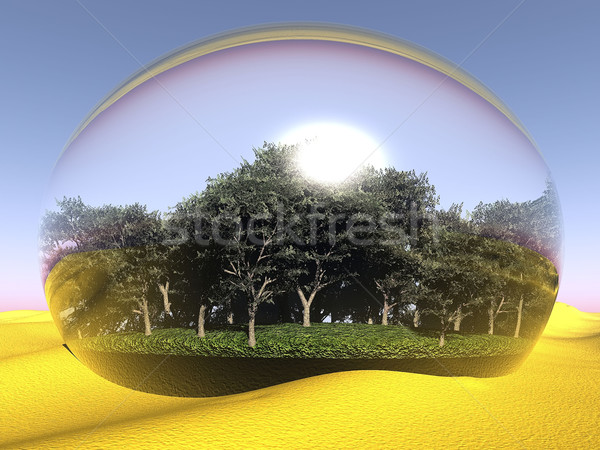 oasis  in a bubble in the desert Stock photo © njaj