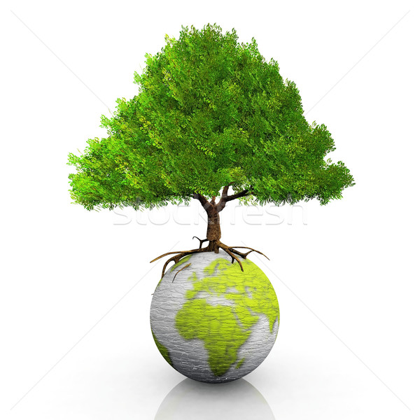 зеленый земле дерево карта Мир Сток-фото © njaj