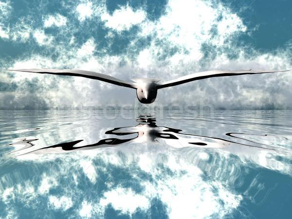 seagull over the water Stock photo © njaj