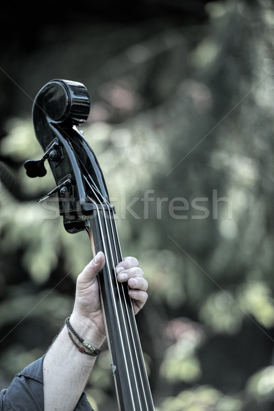 Basszus játékos hang elektromos játék hangszer Stock fotó © njaj