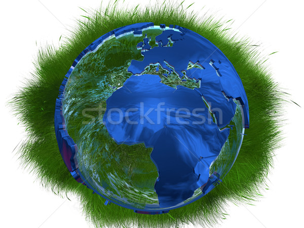 the earth and wild grasses Stock photo © njaj