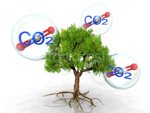 the tree and carbon dioxide Stock photo © njaj