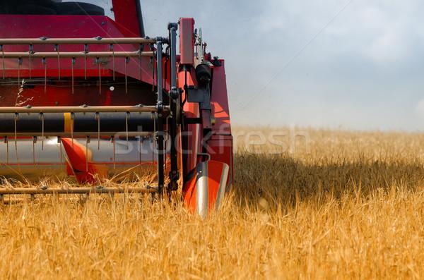 the combine harvester Stock photo © njaj