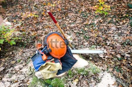 ツール 木こり ツリー 木材 森林 男性 ストックフォト © njaj