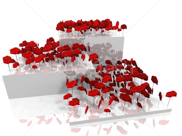 the poppies on platforms Stock photo © njaj