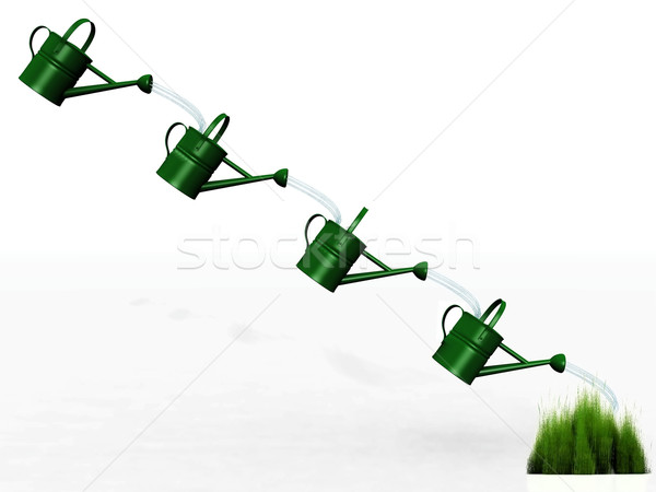 watering cans and the tuft of grass Stock photo © njaj