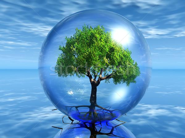 Boom bubble groene boom transparant natuur plant Stockfoto © njaj