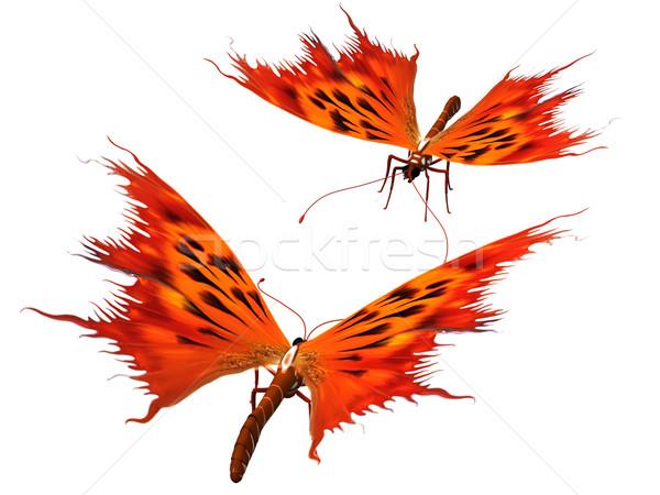 fire butterflies Stock photo © njaj