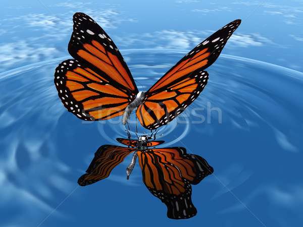 Vlinder mooie vleugels natuur schoonheid zomer Stockfoto © njaj