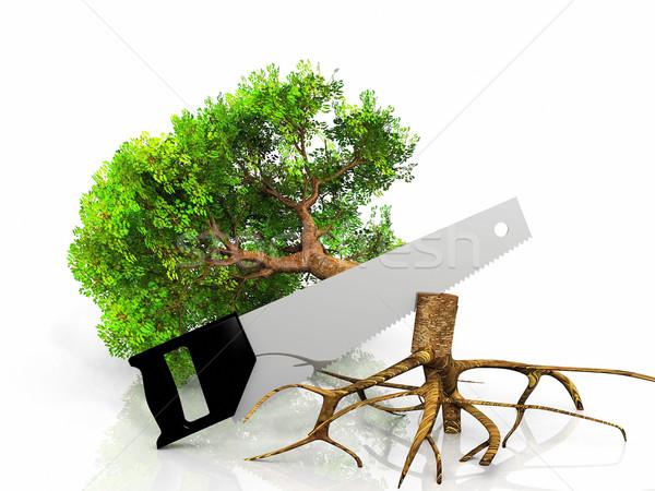 Boom zag groene boom hemel gras zomer Stockfoto © njaj