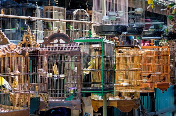 Yogyakarta Bird Market Stock photo © njaj