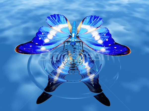 Stock photo: the butterfly
