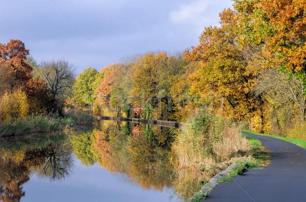 channel et autumn forest Stock photo © njaj