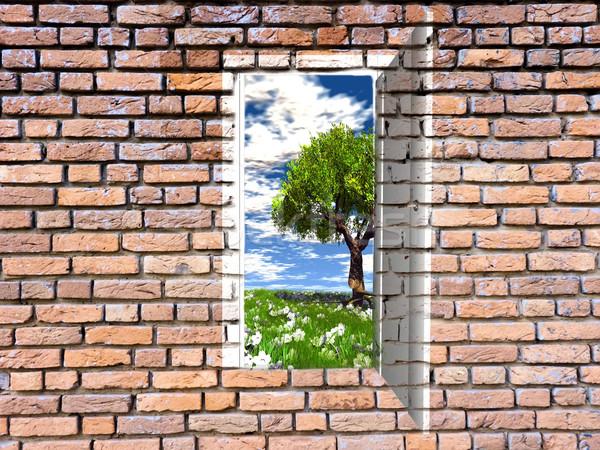 Stok fotoğraf: Kapı · tuğla · duvar · ağaç · turuncu · kırmızı · hayat