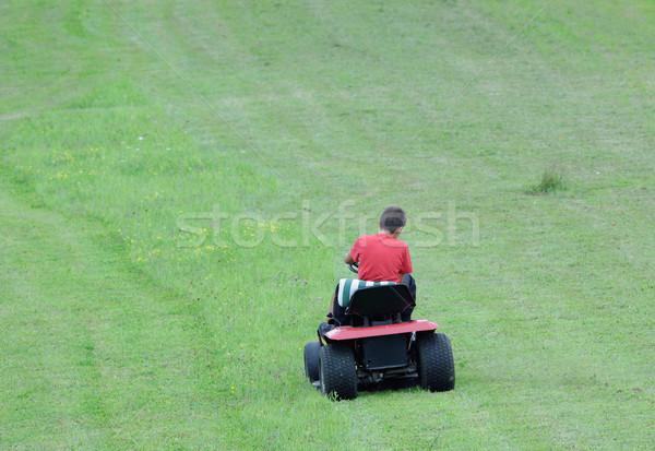 lawn mower Stock photo © njaj
