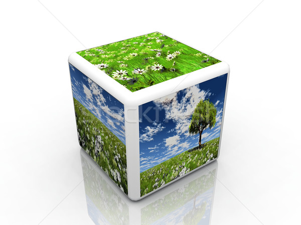 the natur cube Stock photo © njaj