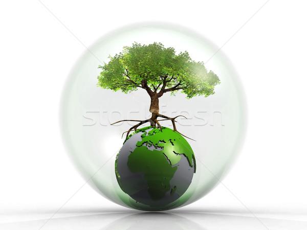 дерево пузыря земле карта Мир стекла Сток-фото © njaj