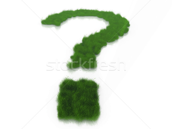 a question mark and grass Stock photo © njaj