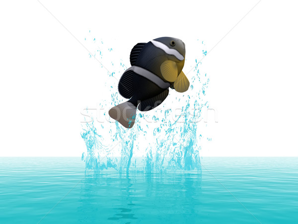 a fish jumps out of the water Stock photo © njaj