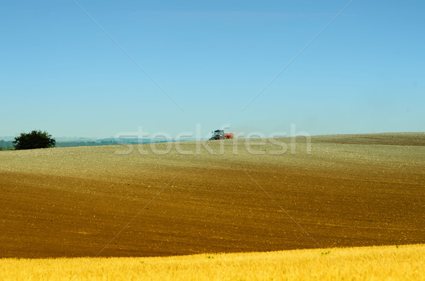 Trator campos comida natureza terra campo Foto stock © njaj