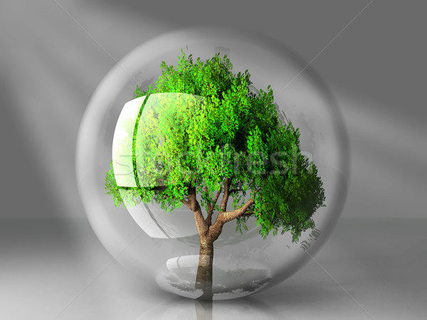 Boom bubble zonnestralen ontwerp plant veiligheid Stockfoto © njaj