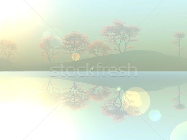 Lac brouillard ciel soleil nature sunrise Photo stock © njaj