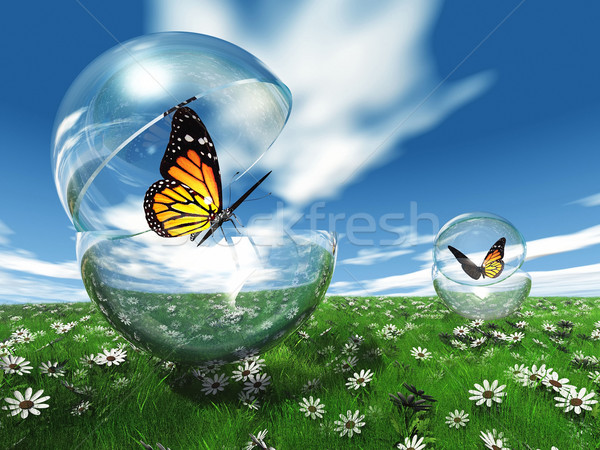蝶 バブル 草原 花 自然 庭園 ストックフォト © njaj