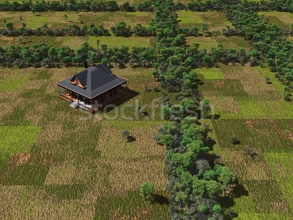 farmland Stock photo © njaj