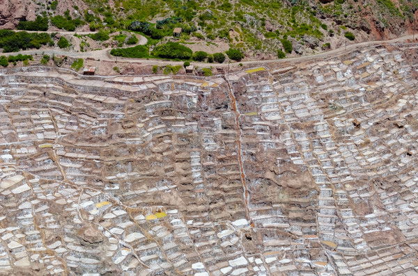 the maras saline Stock photo © njaj