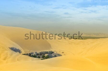 oasis of huacachina Stock photo © njaj
