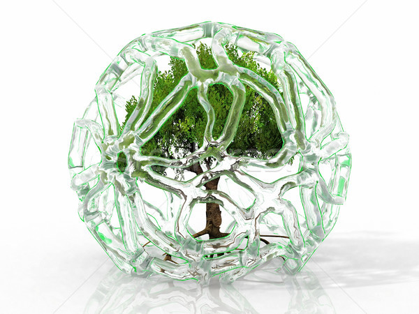 Arbre vert glace arbre paysage usine sécurité Photo stock © njaj