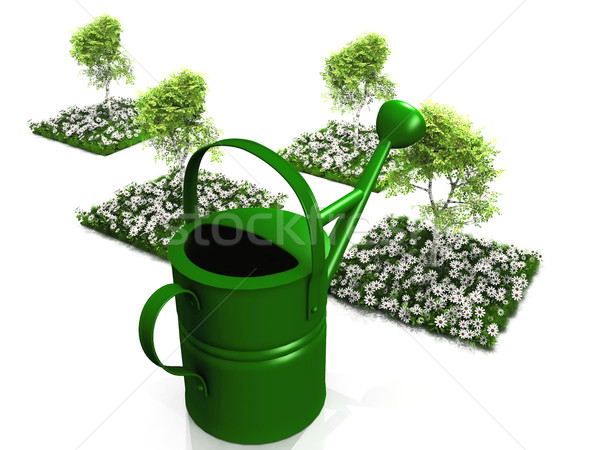 the watering can and small gardens Stock photo © njaj