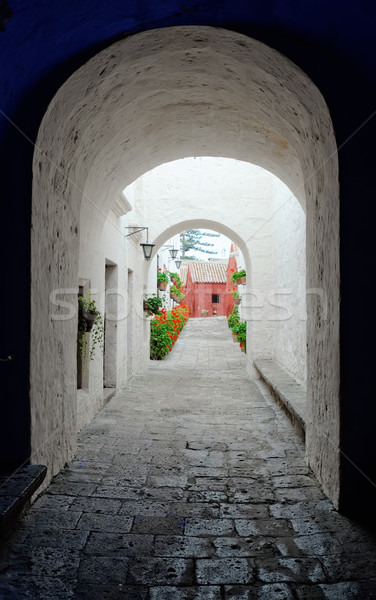 Mosteiro arquitetura história religião américa religioso Foto stock © njaj