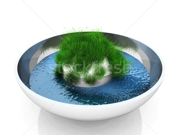 grass  in a jar Stock photo © njaj