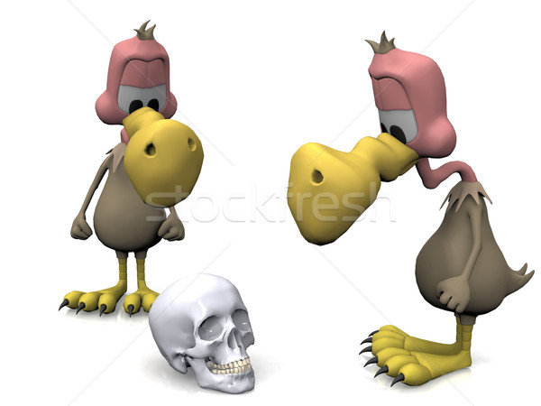 vulture and skull on a white background Stock photo © njaj