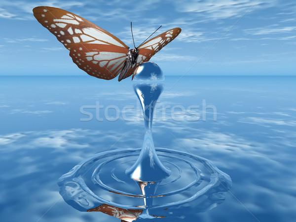 Schmetterling Drop Wasser Textur abstrakten Natur Stock foto © njaj