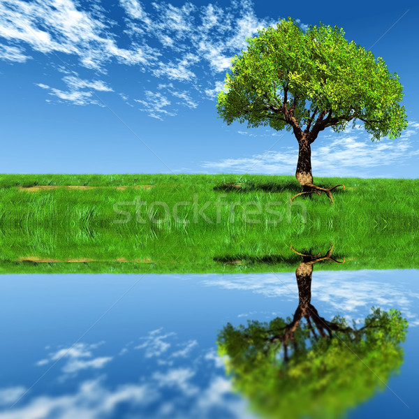 árvore prado água primavera paisagem luz Foto stock © njaj