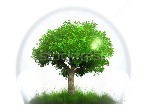 trre in bubble Stock photo © njaj