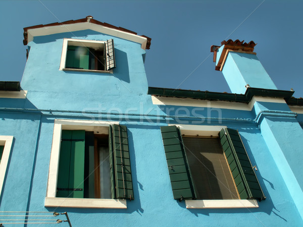 the blue house Stock photo © njaj