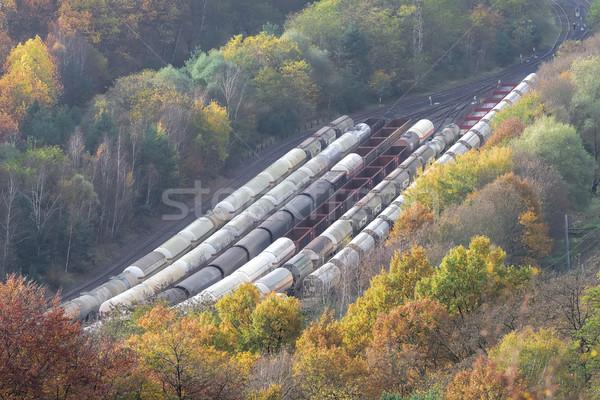 railway yard Stock photo © njaj