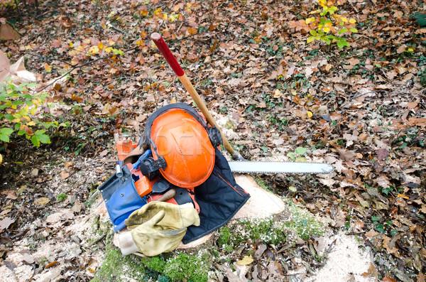 the tools of the lumberjack Stock photo © njaj